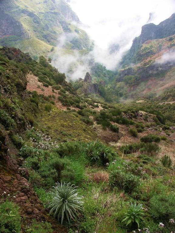 Madeira Treking na Encumeada