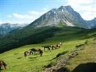 """Komovi jsou v cizojazyčných průvodcích označovány jako """"černohorské Švýcarsko"""""""