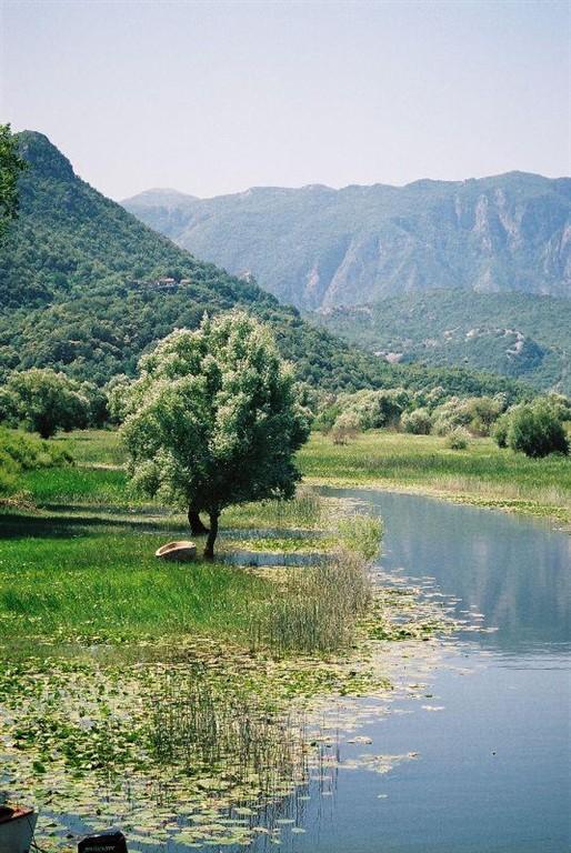 Skadarské jezero je obklopeno horami