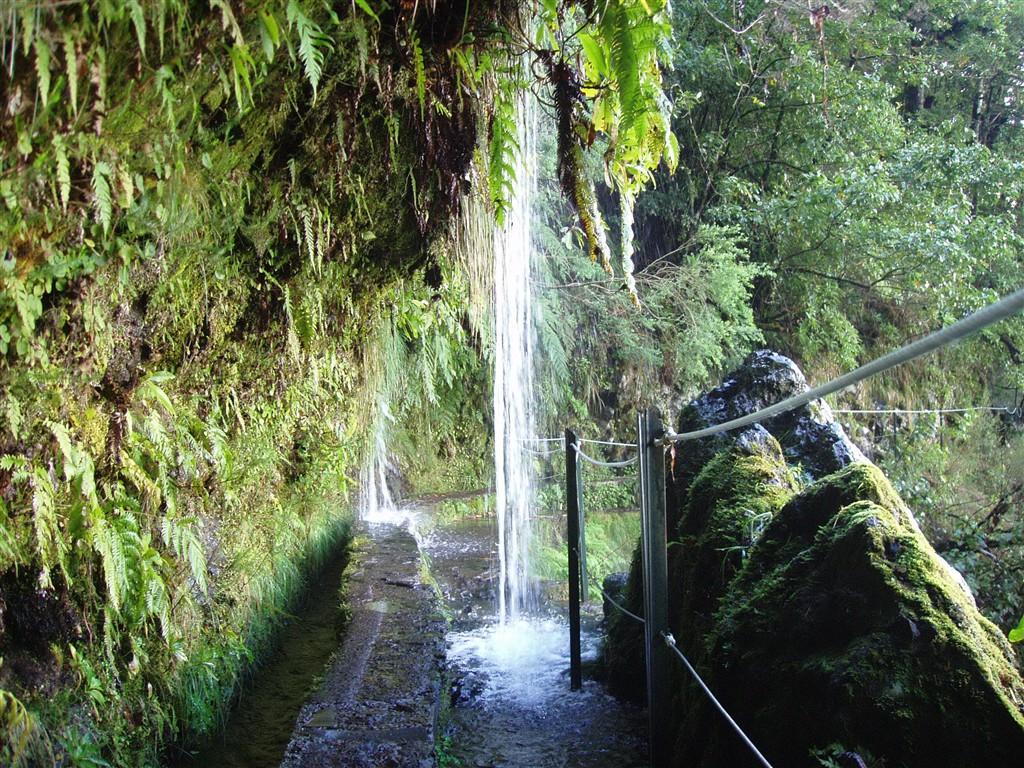 Madeira a jeji typické levády