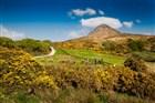 Irsko - národní park Connemara - pohled na Diamond Hill