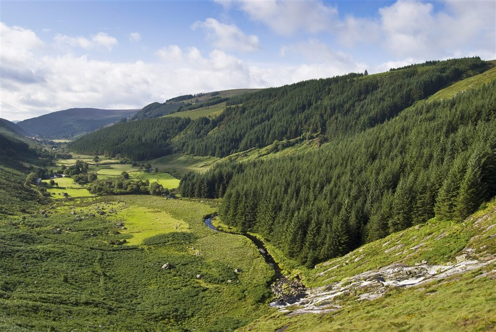 Irsko - Wicklow mountains - údolí