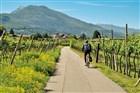 Cyklistika v Itálii