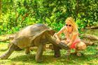 blízké setkání s Želvou obrovskou na ostrově Seychely