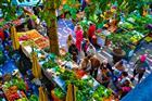 Trh ve městě Funchal - Madeira